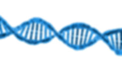 dna molecule.jpg