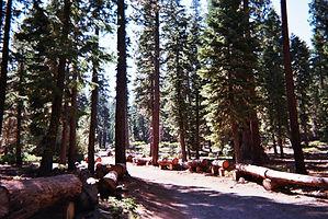 california, lake tahoe, hiking