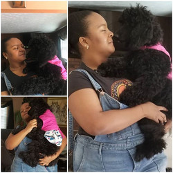 Adonna  was picked up today by her new f