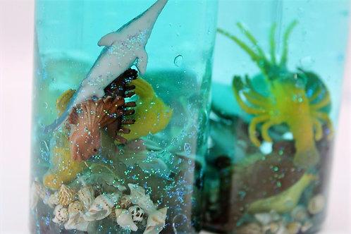 Ocean Discovery Bottles
