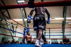 2017-May Sarasota Arena Boxing-6804