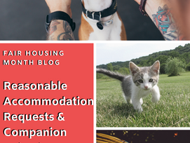 Reasonable Accommodation Requests & Companion Animals