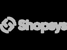 shopsys_edited.png