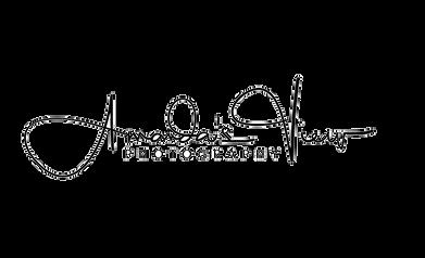 amandas view temp logo black.png