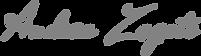 Firma Andrea Zagato, business Coach e docente aziendale