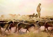 les pastoralines