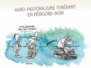 Agro Pastoralisme