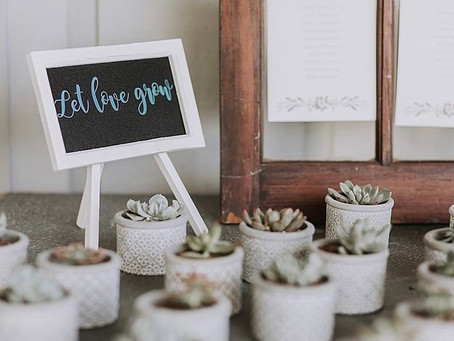 How to Have an Eco-Friendly Wedding Without Breaking the Bank