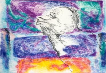 Rothko Monkey 2009 Pastel on Paper
