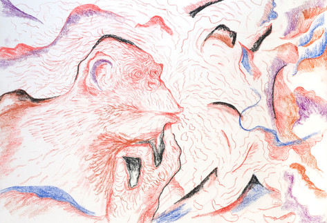 World Puzzle 2009 Pastel on Paper