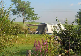 Furnished Tents
