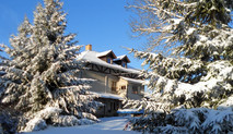 Guesthouse Winter