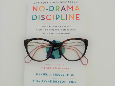BOOK REVIEW: No-Drama Discipline