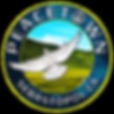 peacetown-logo.png