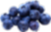 blueberries_PNG16.png