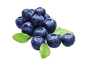 Blueberries 02.png