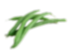 green-beans-02.png