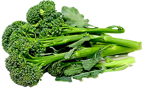 broccoli-2%20Baby_edited.png