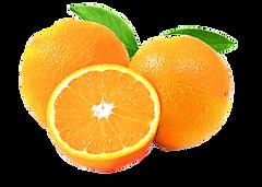 Oranges Navel 02.png