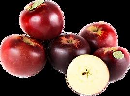 Arkansas Black Apples.png