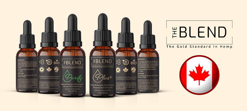 the blend purify + plus banner.jpg