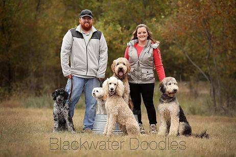 blackwaterdoodlesfamily.jpg