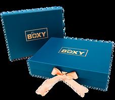 Boxy - DSCF5816-21_edited.png