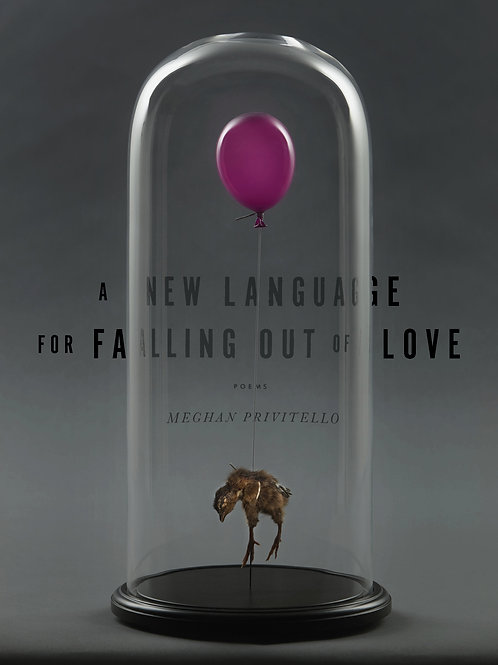 A New Language for Falling Out of Love by Meghan Privitello