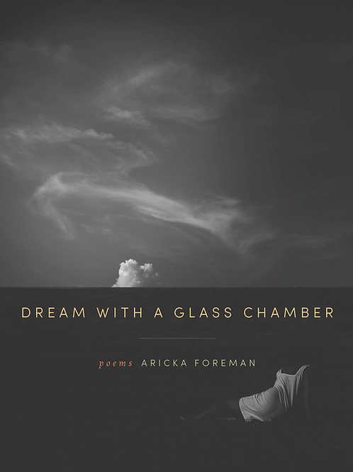 Dream with a Glass Chamber by Aricka Foreman