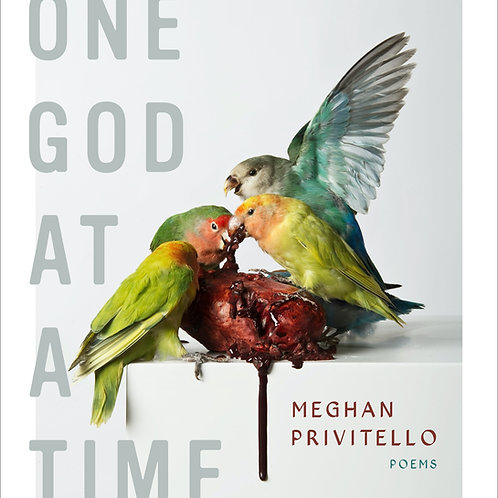 One God at a Time by Meghan Privitello
