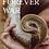Thumbnail: Forever War by Kate Gaskin (Digital)