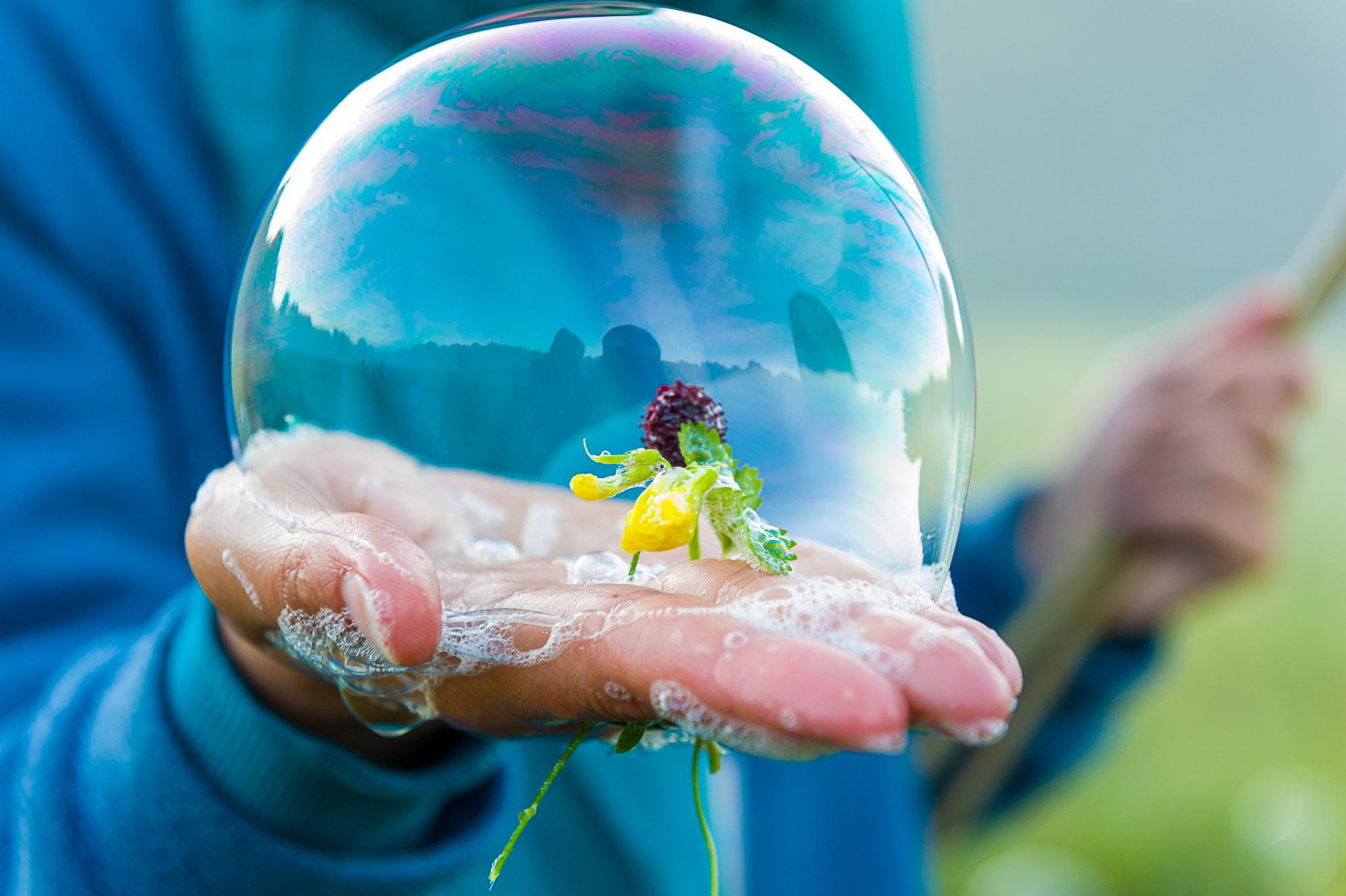 Kwiat w bańce mydlanej