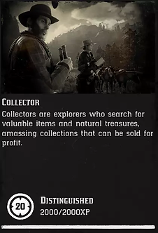 20 Level Collector + 3.000 $