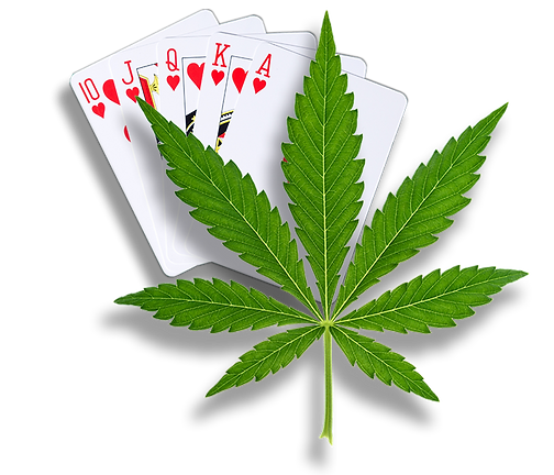 cards-and-cannabis.png