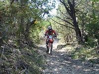 CTOR Trails (2).jpg
