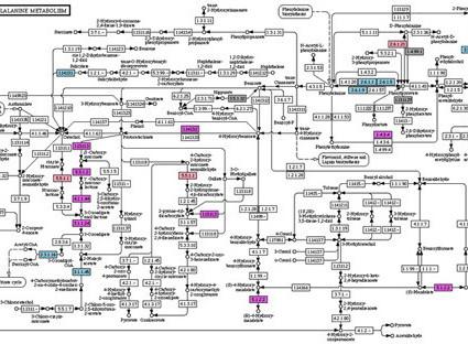 2,000만개 논문 뒤져 '가상인체' 설계