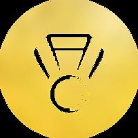 balde_homepage_symbol_erfolge_02.png