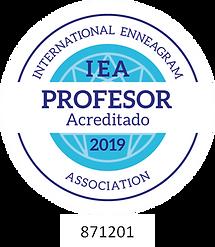 Profesor 2019 Pedro Espadas (3).png