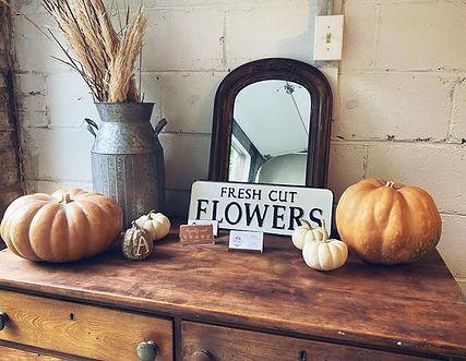 Fall Studio photo.jpg