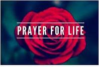 Prayer for Life.jpg