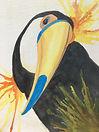 toucan3.canvasboard.jpg