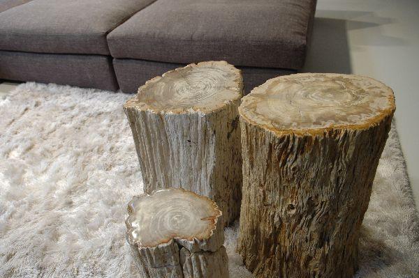 mesa de madera petrificada.jpg