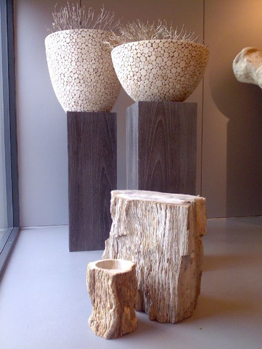 petrified-wood-vase.jpg