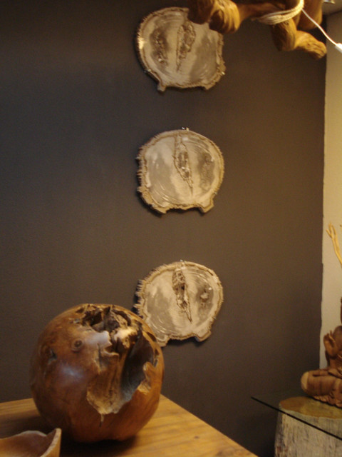 petrified-wood-painting.jpg