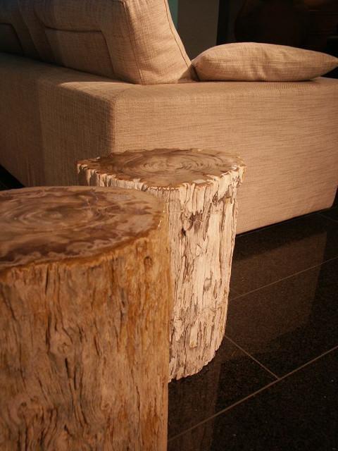 versteend-hout-stool.jpg