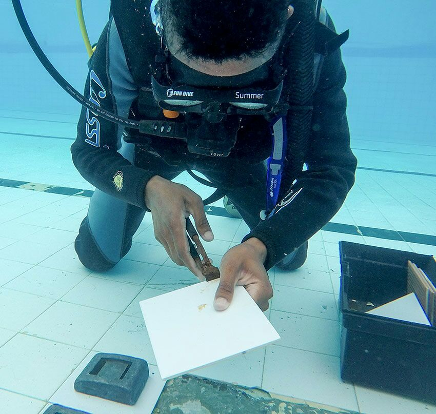 Serviço Subaquático