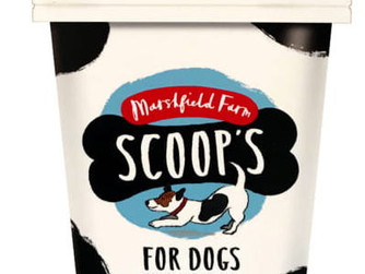 St Mary's shop to trial ice-cream for dogs