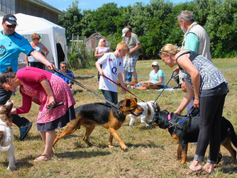Dog Show rescheduled for second time