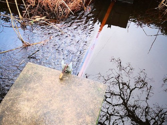 Lower Moors sluice board removed again