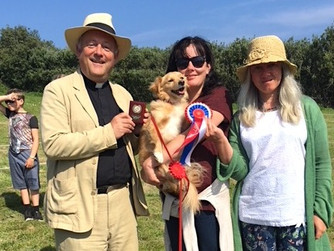 Scilly's Dog Show makes welcome return